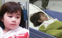 Gia đình cô dâu người Việt trên tàu chìm đến Hàn Quốc