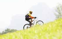 Google Maps thêm tính năng cho người chạy xe đạp