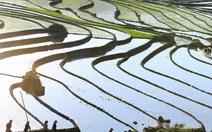 Quyến rũ Sa Pa mùa nước đổ