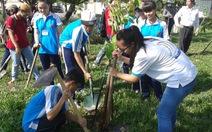 Trồng cây xanh - trồng ý thức