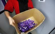 Indonesia: Kiểm tra Sôcôla chứa ADN lợn