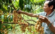 Dội chợ, giá trái cây giảm mạnh