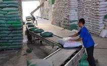 Philippines nhập khẩu thêm 200.000 tấn gạo Việt Nam