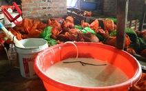 Thu giữ 350kg tê tê chuẩn bị xuất sang Trung Quốc
