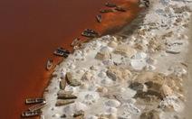 """""""Biển chết"""" ở Senegal"""