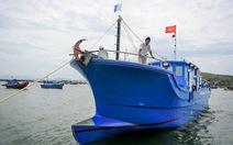 Hạ thủy tàu câu cá ngừ đại dương vỏ composite