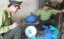 Người châu Á ăn tê tê đến tuyệt chủng
