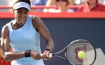 Venus bất ngờ loại Serena ở bán kết Rogers Cup