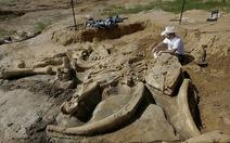 Phát hiện bộ xương voi hoá thạch 60.000 năm tuổi