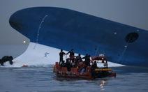 Nhân viên phà Sewol khai uống bia khi phà chìm