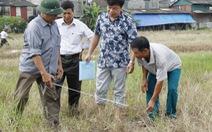 622 hộ dân xã Xuân Quang đã được bàn giao đất