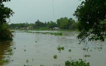 Tây Ninh cải thiện chất lượng nguồn nước sông Vàm Cỏ Đông