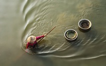 Cào don trên sông Trà