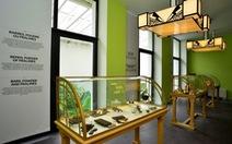 Khám phá bảo tàng chocolate di sản quốc gia Bỉ