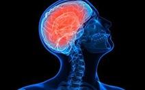 Ghép gân xương người chết não cho người chấn thương nặng