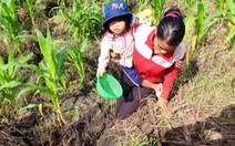 Đất lại sụt lún cạnh lòng thủy điện Đồng Nai 2