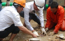 Cảnh báo nạn trộm cổ vật dưới nước
