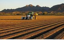Một ngày công nghệ:Người máy làm ruộng