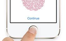 Tòa Mỹ không bảo vệ bảo mật Touch ID của Apple