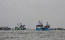 Cà Mau ưu tiên đầu tư 3 cửa biển