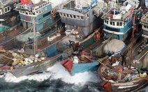 Hàn Quốcthiệt hại 1,2 tỉ USD/năm vì tàu cá Trung Quốc