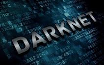 410 website thế giới ngầm bị triệt hạ