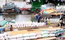 Đồng bằng sông Cửu Long tăng xuất khẩu gạo chất lượng cao