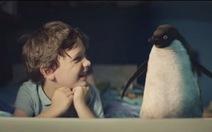 Xúc động clip tình bạn cậu bé và chim cánh cụt