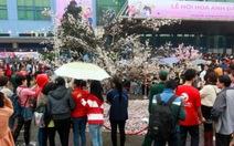 Lễ hội Nhật Bảntại Việt Nam 2014