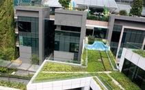 Học quản lý mảng xanh đô thịcủa Singapore