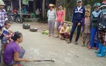 Điểm tin:Rắn lục đuôi đỏ xuất hiện tràn lan ở Quảng Nam