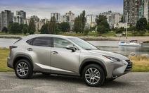 Crossover hạng sang Lexus NX: Hợp nhãn số đông