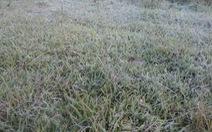 Miền Bắc nhiều nơi 0-1 độ C, có thể đông tuyết