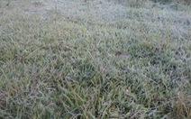 Không khí lạnh tăng cường, miền Bắc tiếp tục rét buốt