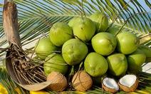 Ăn kẹo dừa giúp tăng sức đề kháng