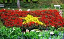 Đà Lạt mùa này thắm những vườn hoa