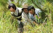 Phim truyền hình Việt 2014:Vắng những gương mặt mới