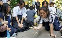 Học sinh Nhật bất ngờ với TP.HCM