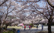 Nhật Bản đón lượng du khách kỷ lục