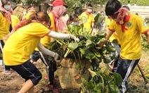 Chiến dịch Xuân tình nguyện 2015: Mang xuân ấm đến mọi nẻo