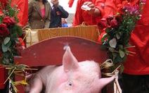 """Không khuyến khíchlễ hội """"man rợ""""như lễ hội chém lợn"""