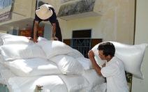 Hơn 5.700 tấn gạo hỗ trợ nhân dân dịp Tết nguyên đán