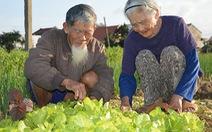 Tình già 90 bên vườn rau
