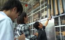 Học môi trường, có thể đăng ký sang Nhật làm việc?