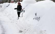 Đông bắc Mỹ lại rét kỷ lục vì bão tuyết