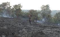Cháy rụi hơn 30 ha cao su, điều ở Đắk Nông
