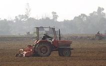 Chuyển đổi cơ cấu cây trồng để chống hạn