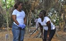 Sắp tuyên bố hết dịch, Liberia lại có 1 người nhiễm Ebola
