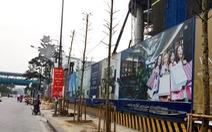 Đề án cải tạo, chặt 6.700 cây, chưa rõ cây thay thế