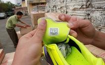 Báo động hàng nhái nhập lậu vào Việt Nam